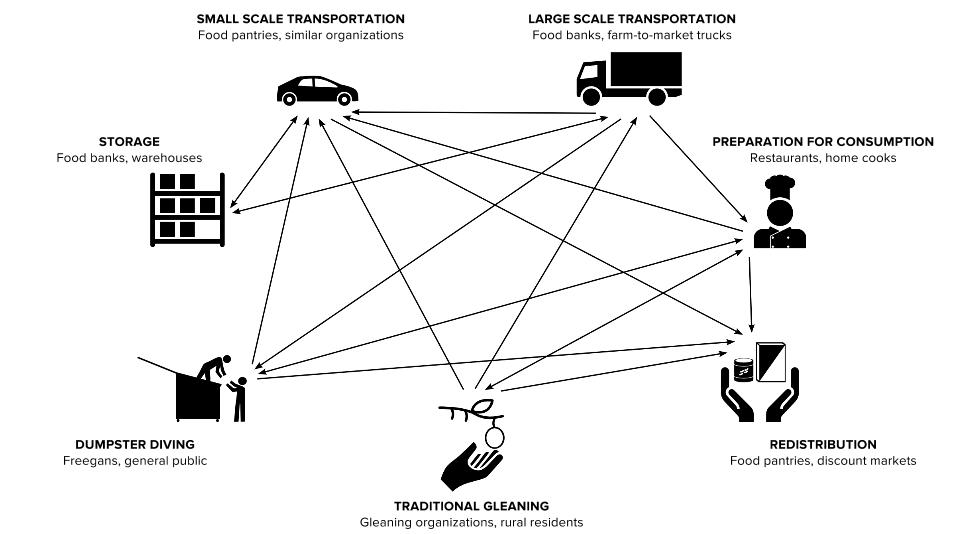 Figure 1: Flow direction of food between activities involving gleaning, clockwise from top-left: small-scale transportation, large-scale transportation, preparation for consumption, redistribution, field gleaning, dumpster diving, and storage. Relationship management is not pictured, but it is present in each flow.